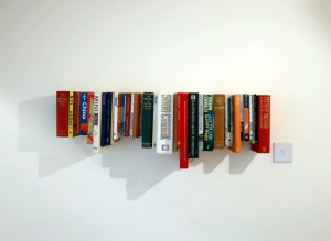 jennion-bookbookshelf